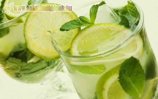 Hűsítő alkoholmentes koktél: Virgin Mojito