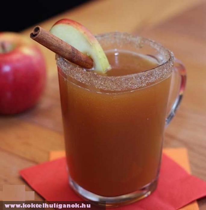 Méz, almalé, pici pálinka, vanilia (vagy fahéj): csudajó meleg koktél