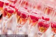 Gyümölcsös pezsgõk